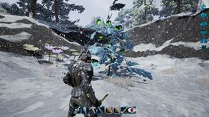 Fragmented snow biome1