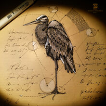 20170304 heron psdelux by psdeluxe-db1dmb3