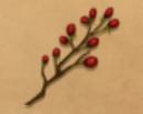 Fireberries