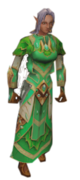 024 elfe