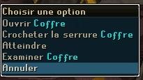 CrochetageSerruresCoffre-1