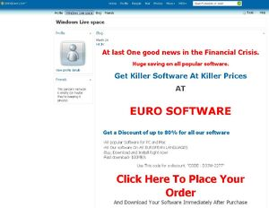 Euro Software redirection