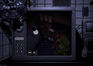 Fredbear closet