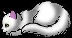 Светлячок (Котёнок)