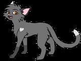 Scratch (Scratch Star)