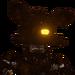 Burnt Foxy -Icono