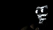 Freddys Endoskeleton