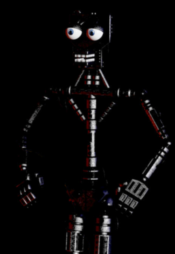 Full Endoskeleton