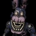 ICO NM Bonnie
