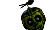Phantom BB UCN