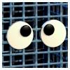 No. 1 Crate Icon