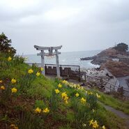 Iwami's Overlook