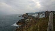 The Iwami coastline