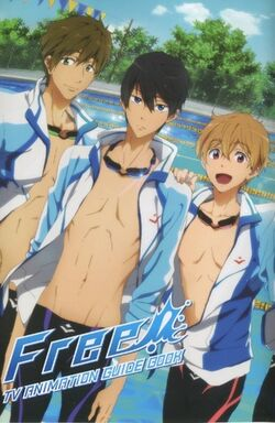 Free! guide book cover