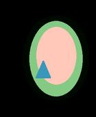 Abalone Pearl Gem