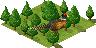 Ts.pheasant