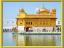 B.golden temple
