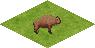 Ts.buffalo