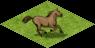 Ts.horses