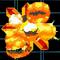 FireBomb F