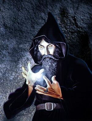 BlackRobeWizard Are You a Wizard-s435x571-66660-535