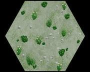 Ash plains