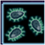 Comm organisms 1