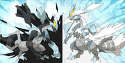 Pokemon-black-and-white-2-black-kyurem-and-white-kyurem-artwork