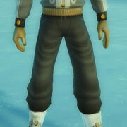 Subarctic winterwear pants