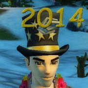 2014 party hat