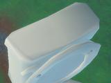 Giant Toilet Bowl