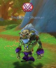 Treasure of the bone shaman
