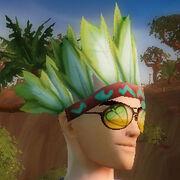 Nature feathered headdress