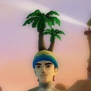 Palmtreehat