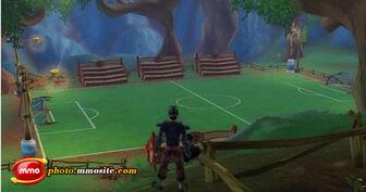 Freerealms soccer02