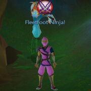 Fleetfoot ninja!
