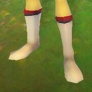 Astonishing boots