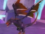 Gold-Tipped Dragon