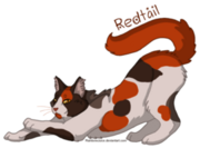 002 redtail by rainbowjuice-d395fal