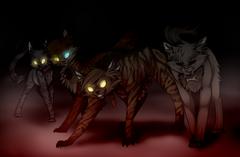 Darkforest clan cats