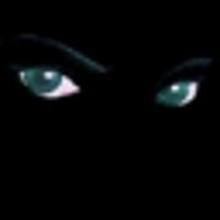 Shadow Rogue