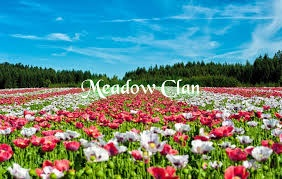 Meadow Clan