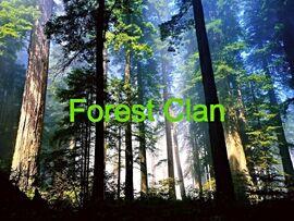 Original Forest a Clan Flag