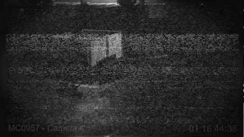 Nightime Security Camera Footage Thursday Feb 9, 2012.