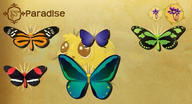 Paradise Set§Flutterpedia