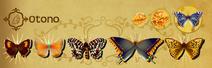 Otono Set§Flutterpedia