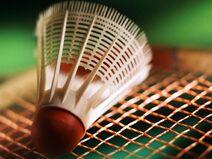 Badminton-1-KLLDQWHGIT-1024x768