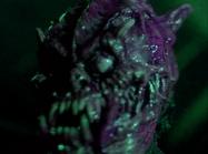 Jason goes to hell demona