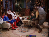 The One With The Holiday Armadillo