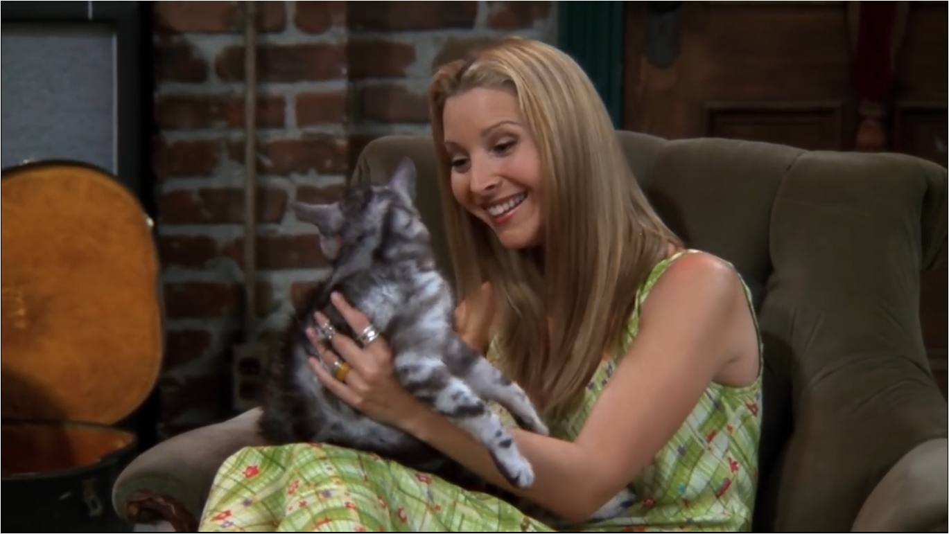 The One With The Cat | Friends Central | FANDOM powered by Wikia